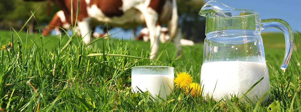 slider-prodotti-lattiero-caseari-prato